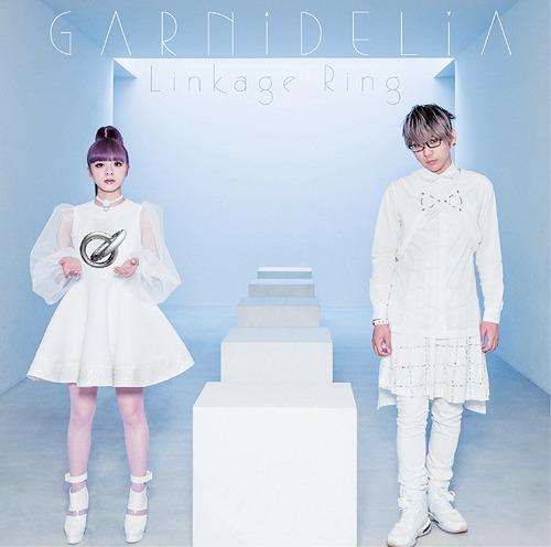 GARNiDELiA Linkage Ring